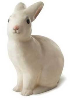 Rabbitok